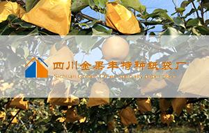 四川金果丰特种纸袋厂