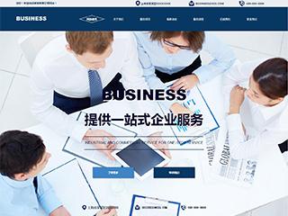 工商财税网站建设模板