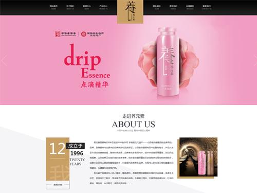 美容保健养生网站建设模板